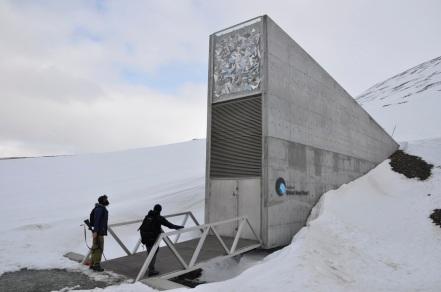 Global Seed Vault | globalny bank nasion