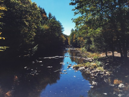 Natchaug State Forest