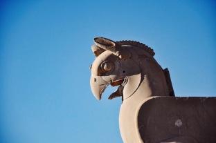 Gryf w Persepolis | Fot. Magdalena Garbacz-Wesołowska