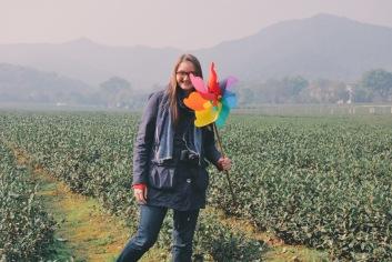 pola herbaciane koło Hangzhou